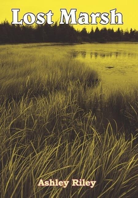 Lost Marsh als Buch