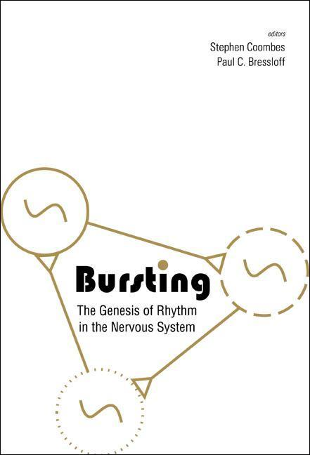 Bursting: The Genesis Of Rhythm In The Nervous System als Buch