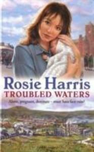Troubled Waters als Taschenbuch
