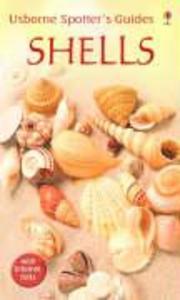 Shells als Taschenbuch