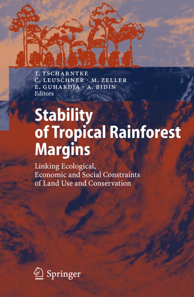 Stability of Tropical Rainforest Margins als Buch