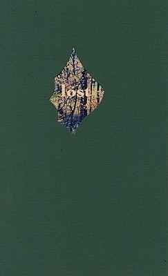 Lost and Certain of It als Taschenbuch