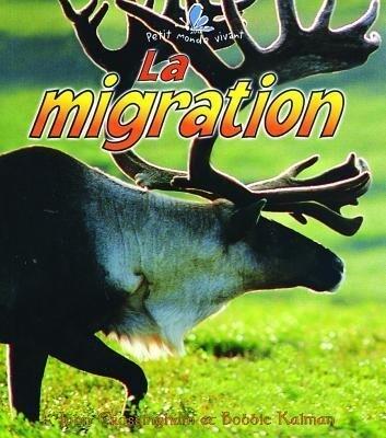 La Migration als Taschenbuch