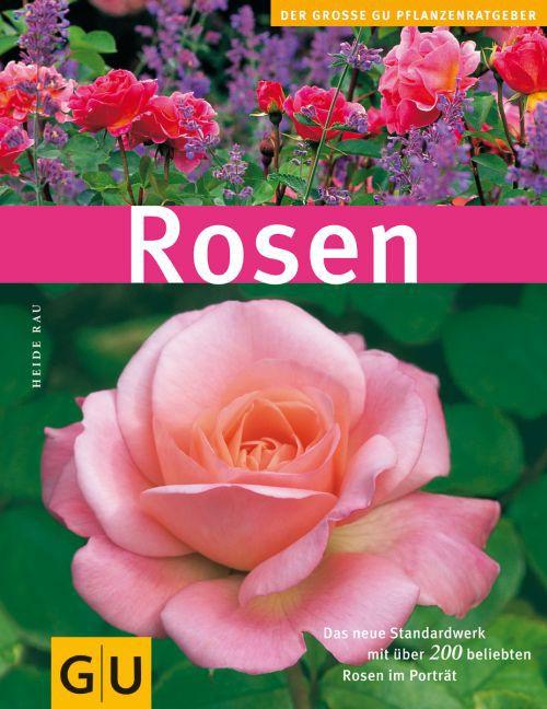 Rosen als Buch