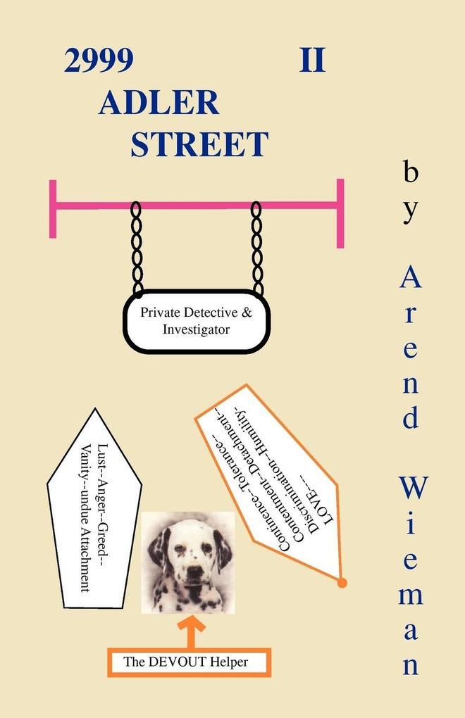 2999 Adler Street II als Buch