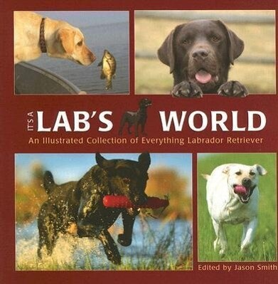 It's a Lab's World: An Illustrated Collection of Everything Labrador Retriever als Buch