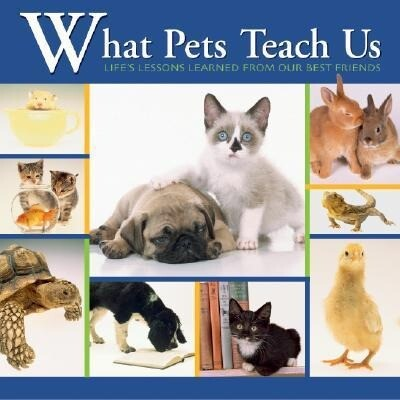 What Pets Teach Us: Life's Lessons Learned from Our Best Friends als Buch
