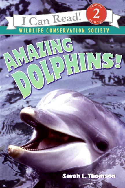 Amazing Dolphins!: als Buch