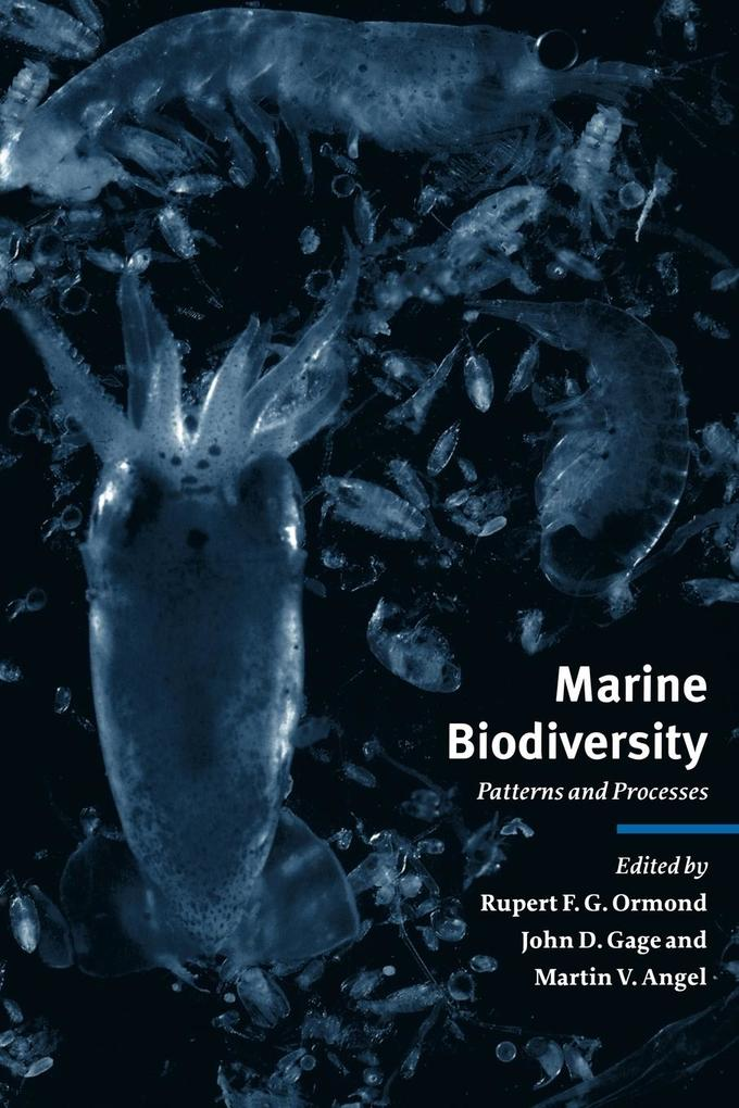 Marine Biodiversity: Patterns and Processes als Buch