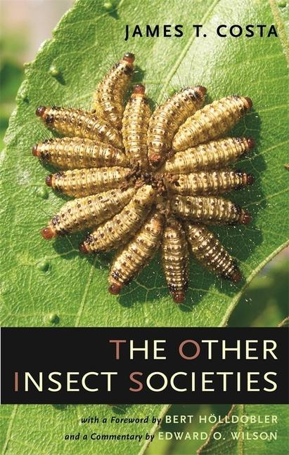 The Other Insect Societies als Buch