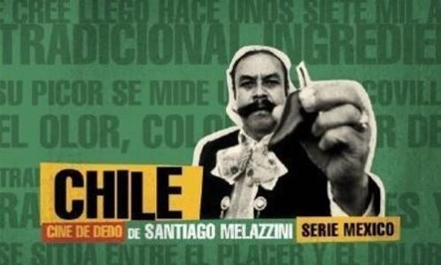 Chile: Flip Book als Buch