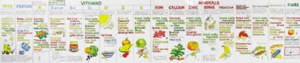 Vitamin Chart als Buch