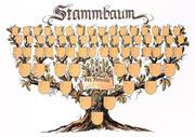 Stammbaum Schmuckbild