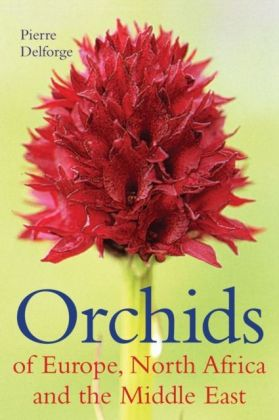 Orchids of Europe, North Africa and the Middle East als Buch