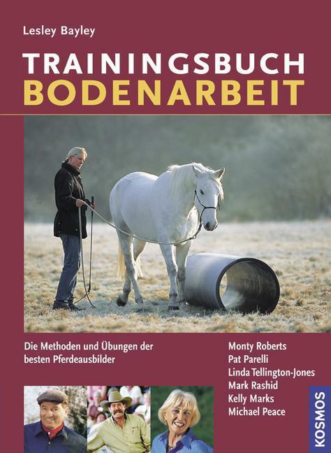 Trainingsbuch Bodenarbeit als Buch