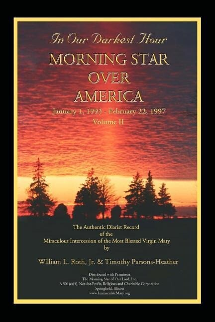 In Our Darkest Hour - Morning Star Over America / Volume II - January 1, 1993 - February 22, 1997 als Taschenbuch