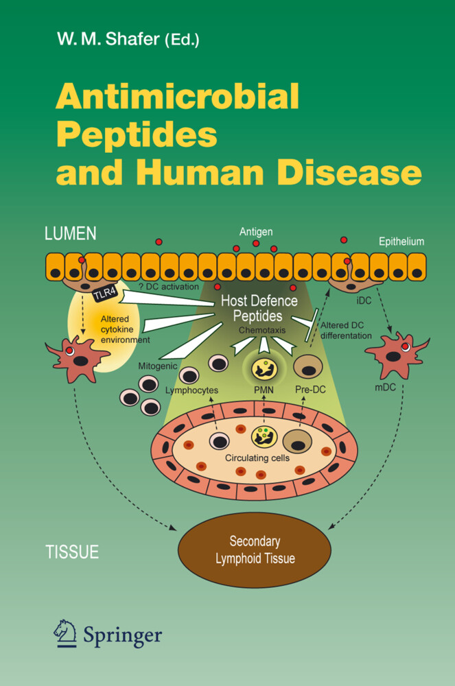 Antimicrobial Peptides and Human Disease als Buch