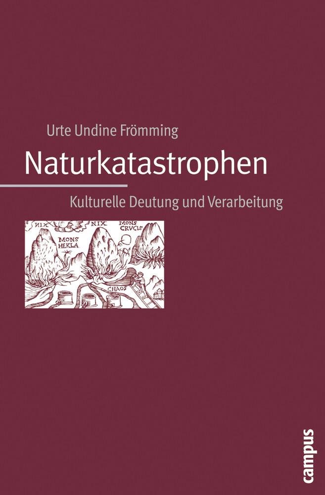 Naturkatastrophen als Buch