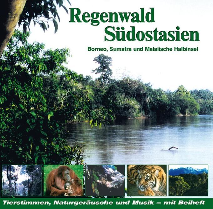 Regenwald Südostasien,Borneo,Malaysia als Hörbuch