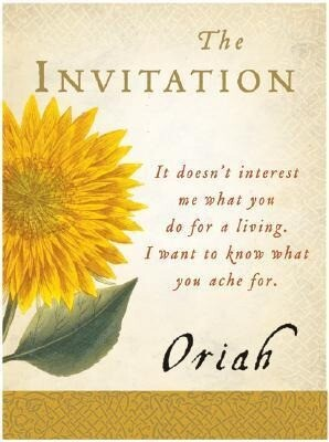 The Invitation - Boxed Set als Taschenbuch