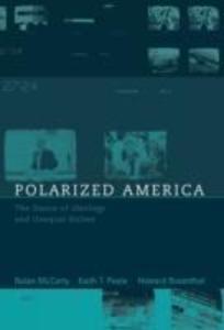 Polarized America als Buch