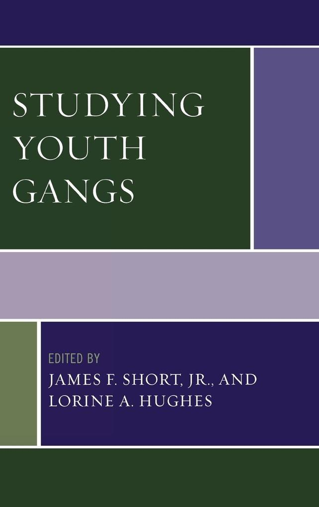 Studying Youth Gangs als Buch