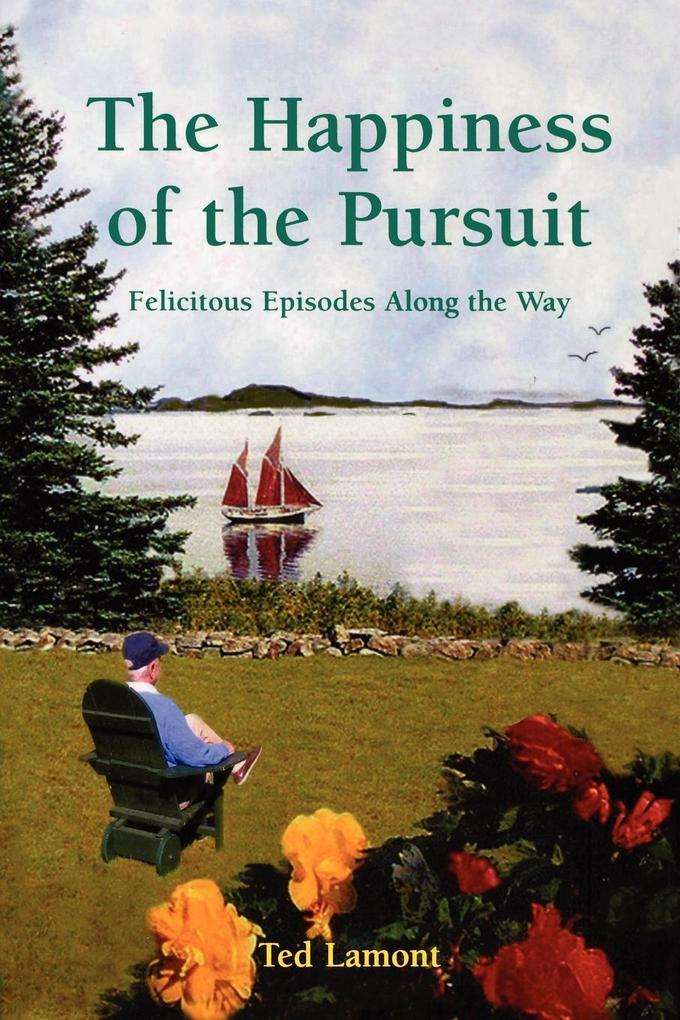 Happiness of the Pursuit als Taschenbuch