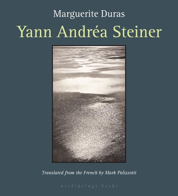 Yann Andrea Steiner als Taschenbuch