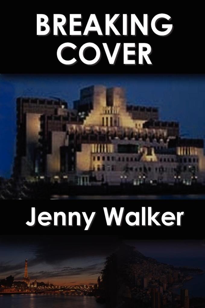 Breaking Cover als Taschenbuch