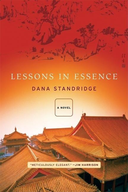 LESSONS IN ESSENCE als Taschenbuch