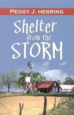 Shelter from the Storm: 30 Postcards als Taschenbuch