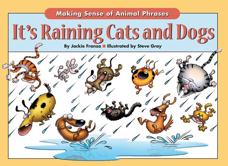 It's Raining Cats and Dogs: Making Sense of Animal Phrases als Taschenbuch