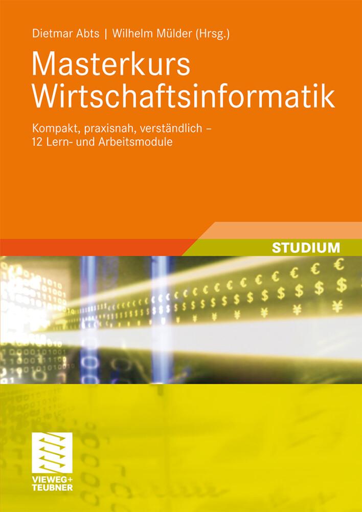 Masterkurs Wirtschaftsinformatik als Buch