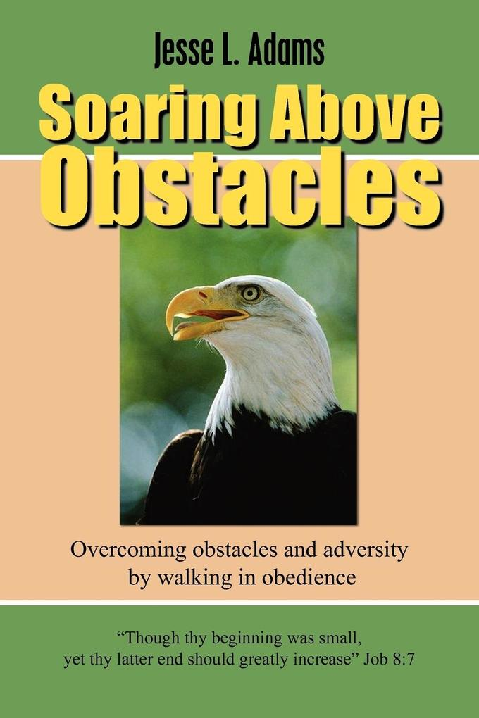 Soaring Above Obstacles als Taschenbuch