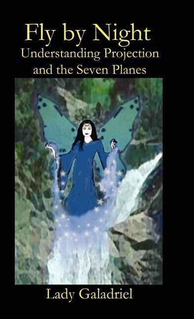 Fly by Night. Understanding Projection and the Seven Planes als Buch