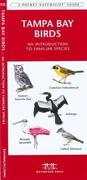 Tampa Bay Wildlife: A Folding Pocket Guide to Familiar Plants and Animals