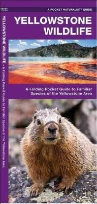 Yellowstone Wildlife: A Folding Pocket Guide to Familiar Animals of the Yellowstone Area als Spielwaren