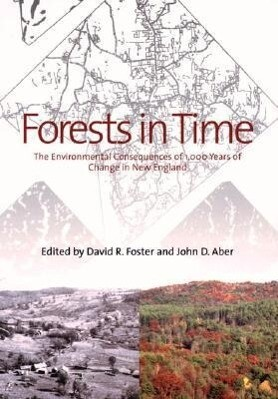 Forests in Time: The Environmental Consequences of 1,000 Years of Change in New England als Taschenbuch
