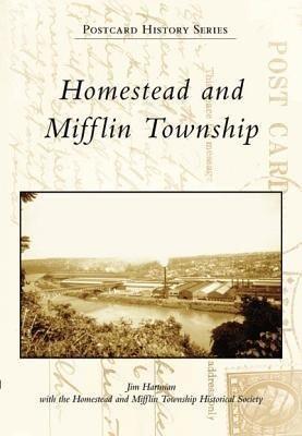 Homestead and Mifflin Township als Taschenbuch