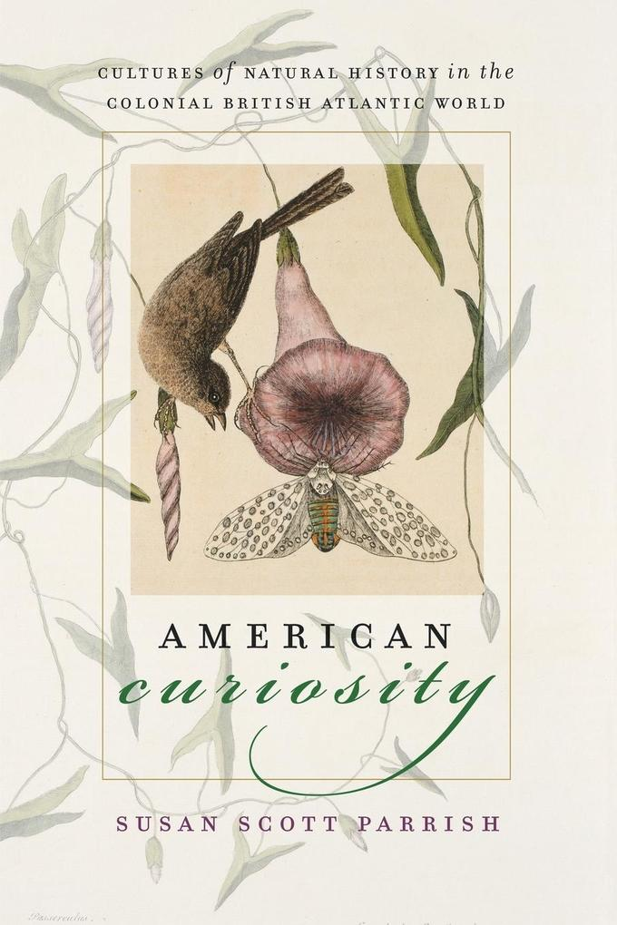 American Curiosity: Cultures of Natural History in the Colonial British Atlantic World als Taschenbuch