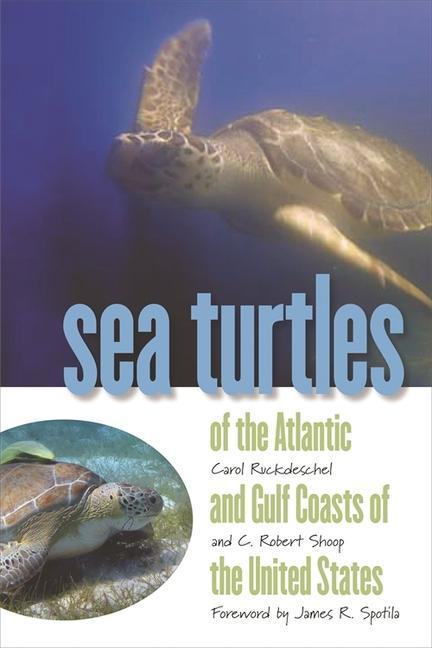 Sea Turtles of the Atlantic and Gulf Coasts of the United States als Taschenbuch