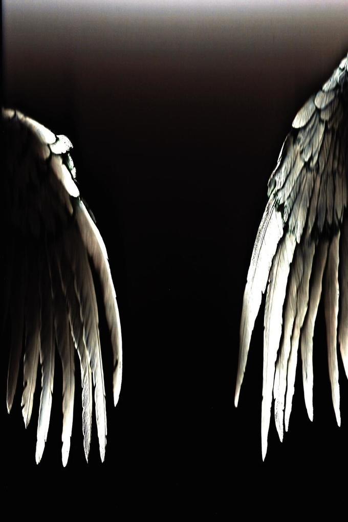 The Angels of Resistance (6 X 9) Version als Taschenbuch