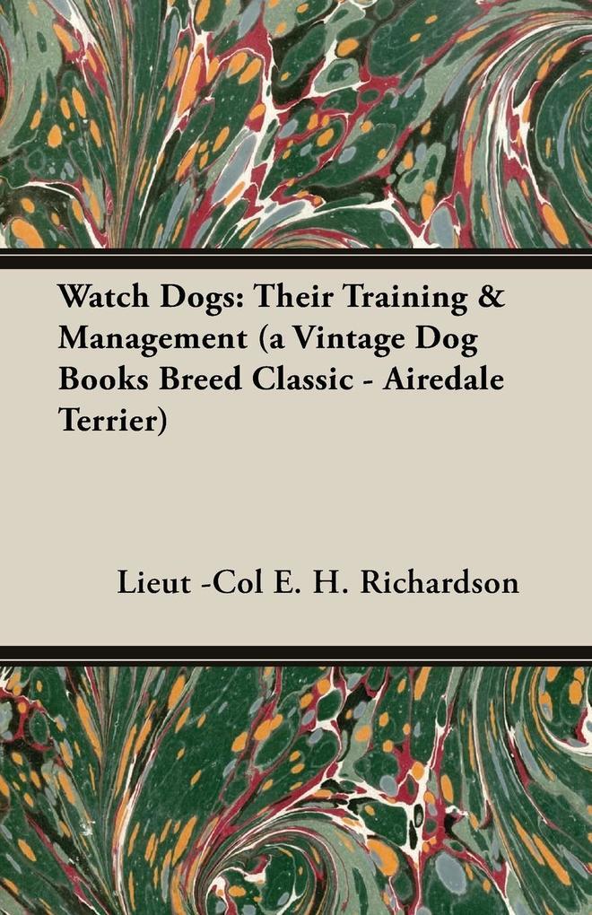 Watch Dogs als Taschenbuch
