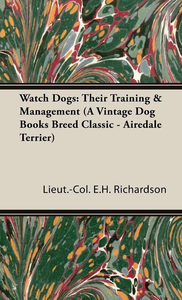 Watch Dogs als Buch