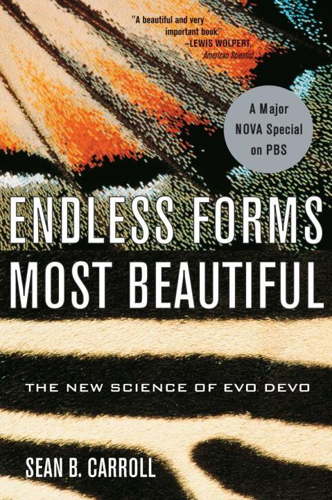 Endless Forms Most Beautiful: The New Science of Evo Devo als Taschenbuch