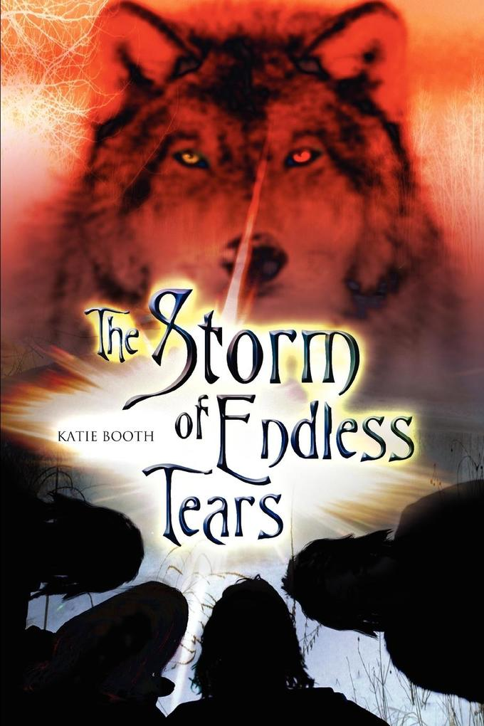 The Storm of Endless Tears als Buch