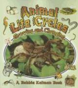 Animal Life Cycles: Growing and Changing als Taschenbuch