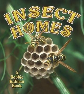 Insect Homes als Taschenbuch