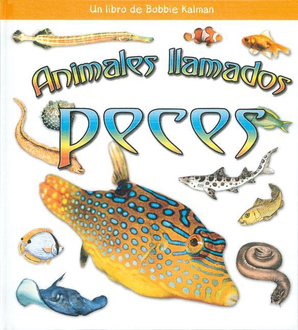 Animales Ilamados Peces als Buch