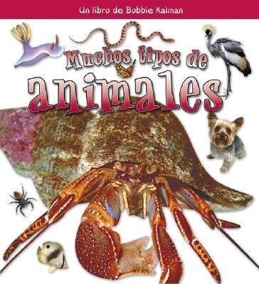 Muchos Tipos de Animales als Taschenbuch